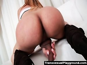 Latin shemale hottie strokes and teases