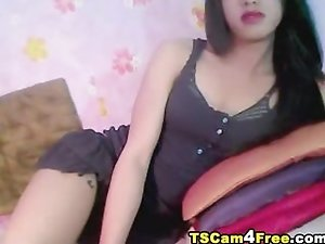 Gorgeous Asian Tgirl Strokes Her Hard Cock